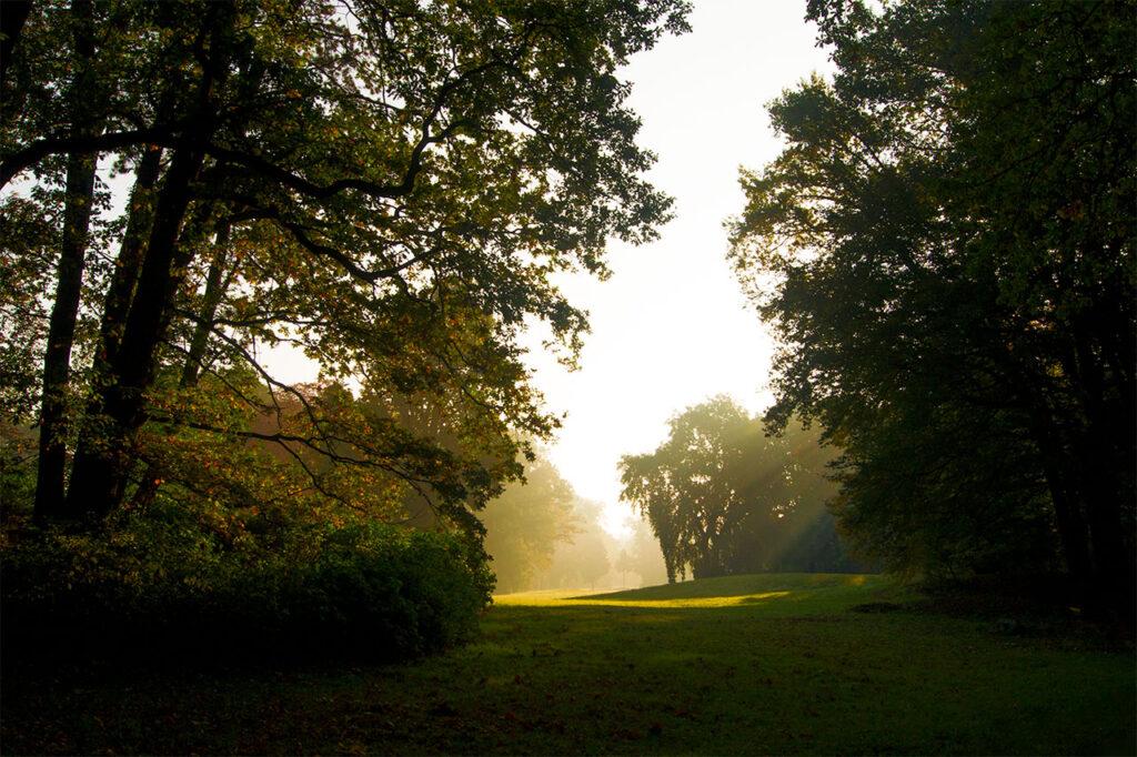 Pueckler Park Branitz