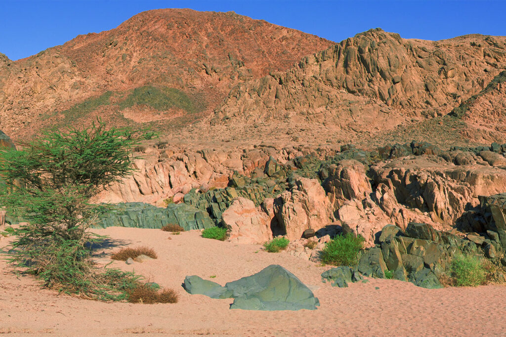 The Sinai desert